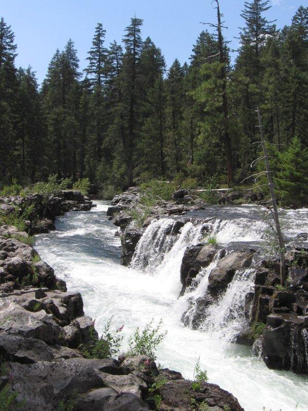 Dedasys com wizard island rogue river rogue river forest index